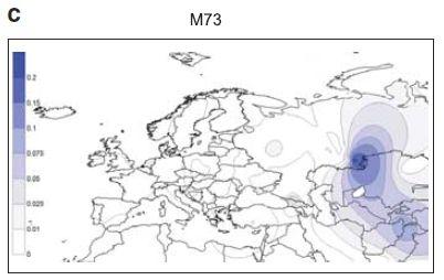 Haplogroup dominions [Archive] - ForumBiodiversity com